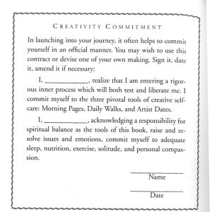 vog_contract