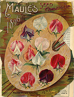 Old fashioned seed packet