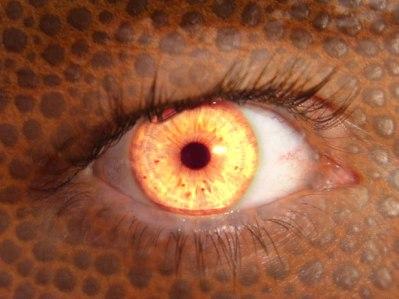 monster_eye